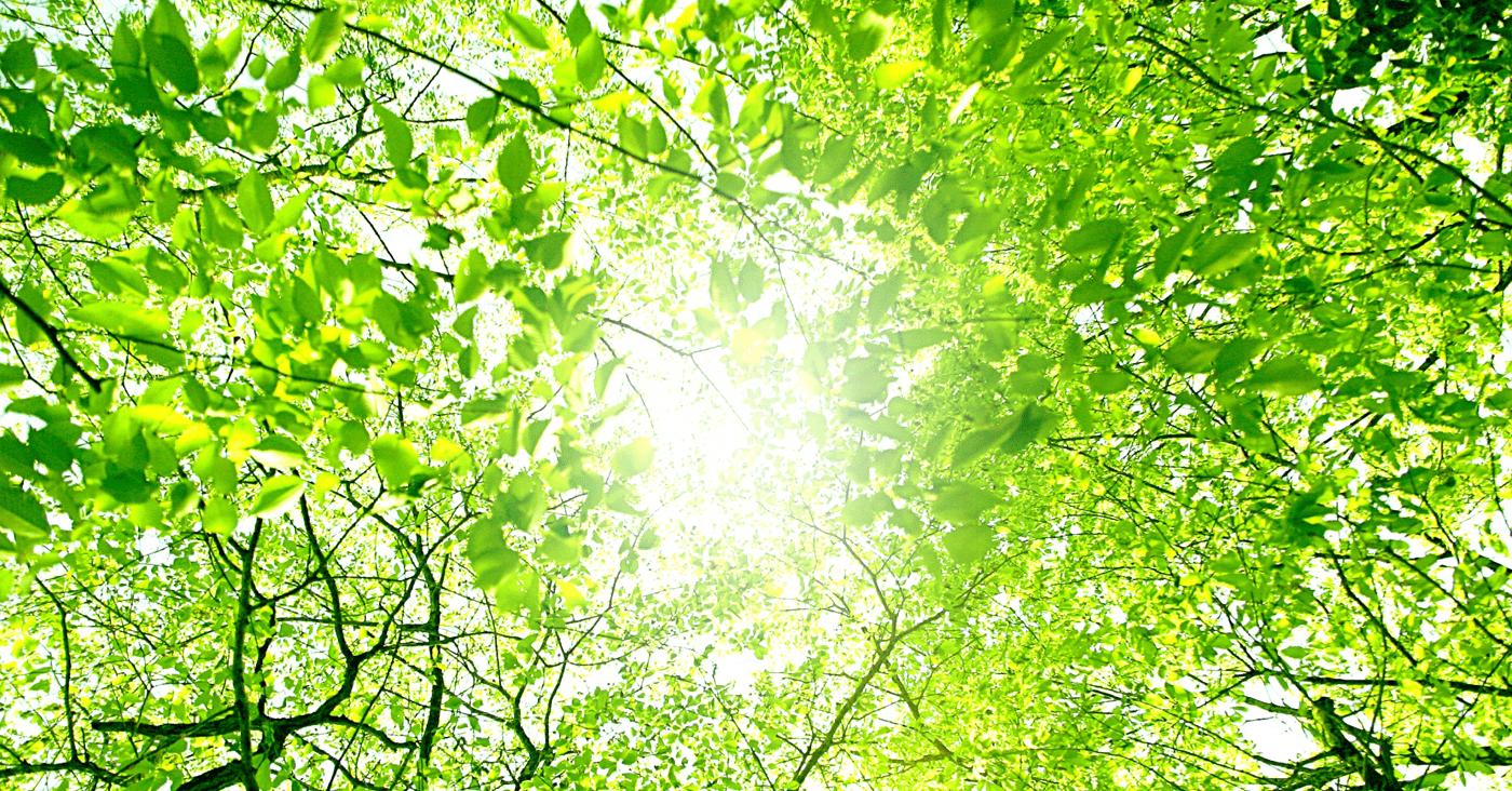 ー環境サポート事業ー<br /> 構造物・施設における<br /> 環境・コスト削減をご提案!<br /> 御社の環境改善をサポートします。