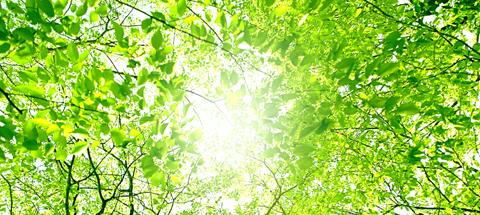 環境サポート事業